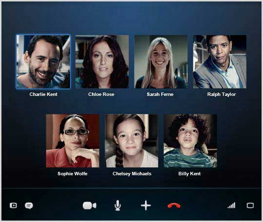 The Skype group video call screen.