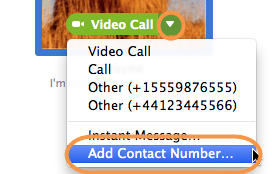 Screenshot of the options menu with the Add Contact Number option selected. The menu appears when you click a little down arrow on the green call button that you can bring up by placing your cursor over a contact's picture in Skype