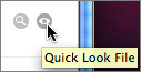 Reveal File in Finder and Quick Look for Preview buttons selected in the conversation window.
