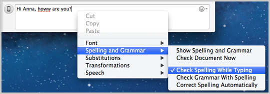 The options to be selected to turn the spell checker on.