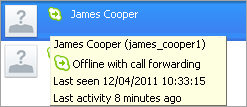 Additional information displayed for a contact with an Offline status: call forwarding options, the date of the last activity, and the last conversation with you.